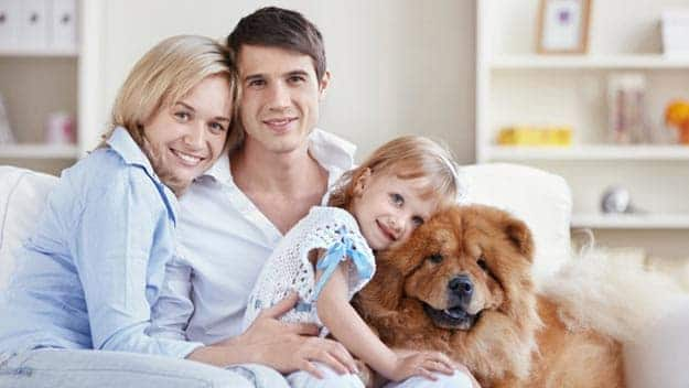 Wills & Trusts dog-young-family Direct Wills Kingston Vale